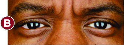celebrity eye spy